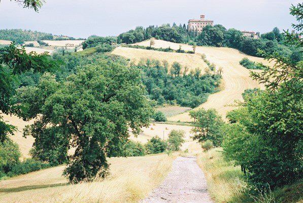 Villa Pia landscape