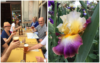 Lunch, and the Iris garden