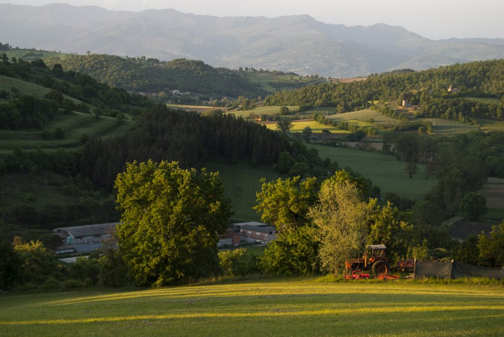 Villa Pia hosts the Idler Retreat in autumn
