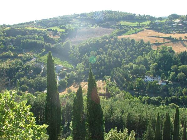 Villa Pia landscapes